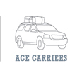 Rightline Ace Car Top Carriers